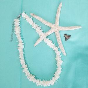 NWOT Puka shell necklace